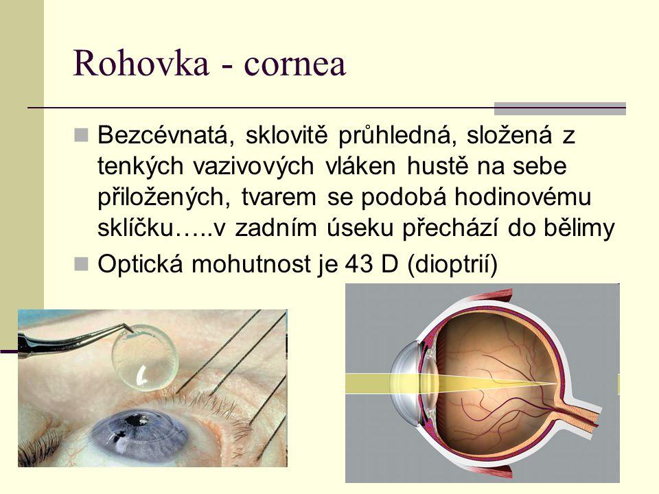 Rohovka - cornea
