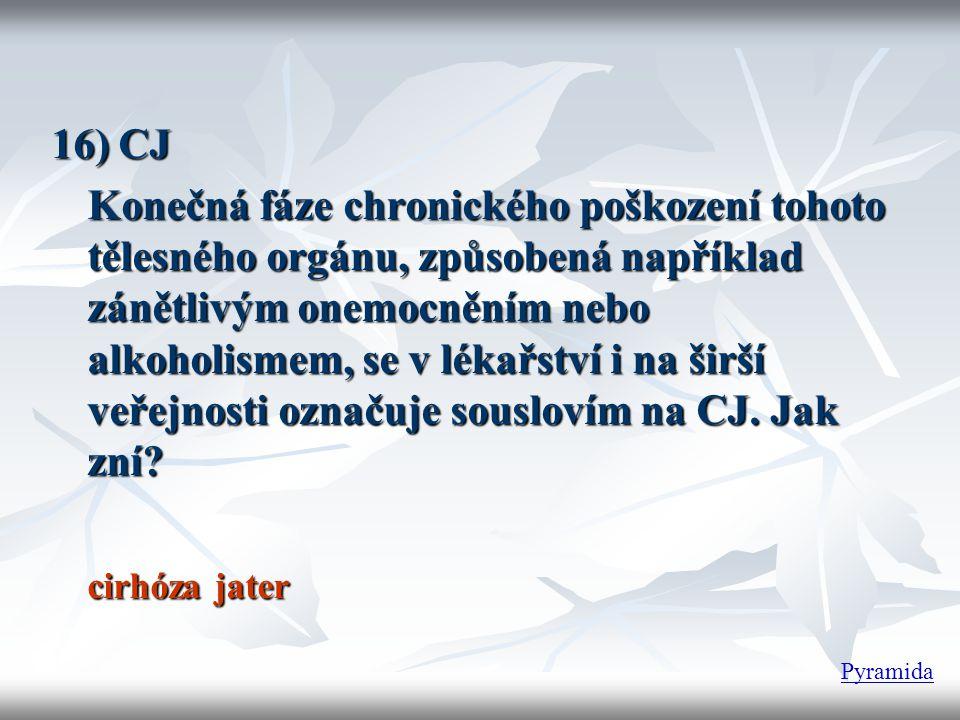 16) CJ