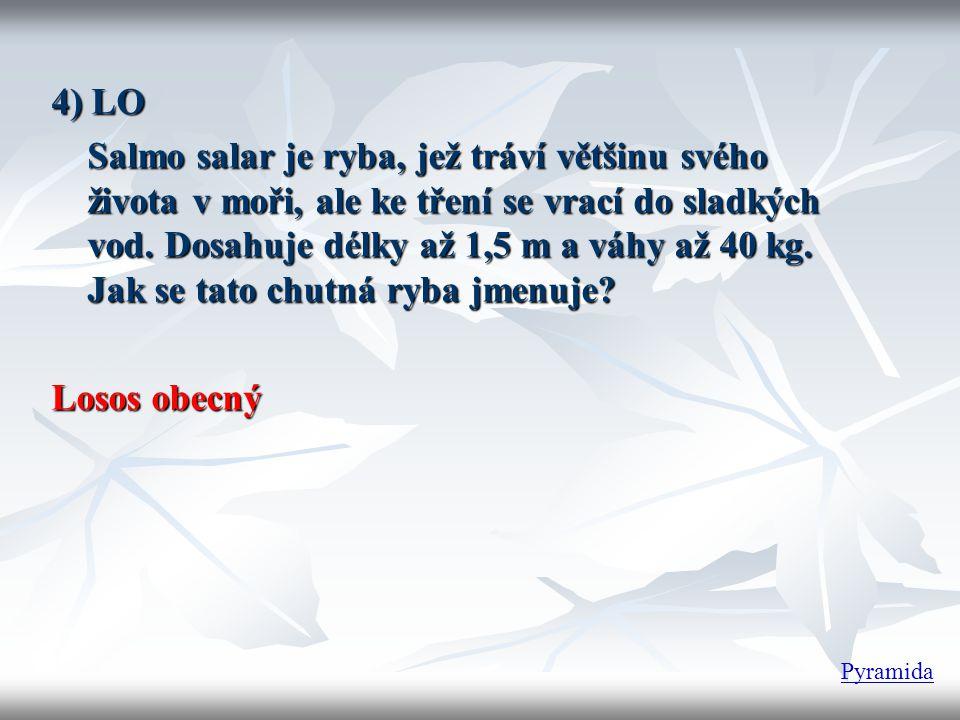 4) LO