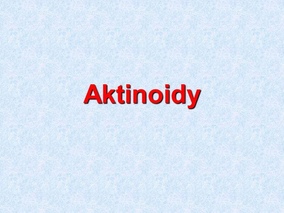 Aktinoidy