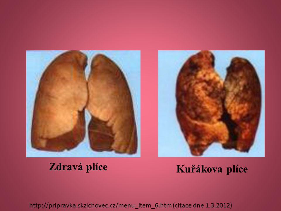 Zdravá plíce Kuřákova plíce