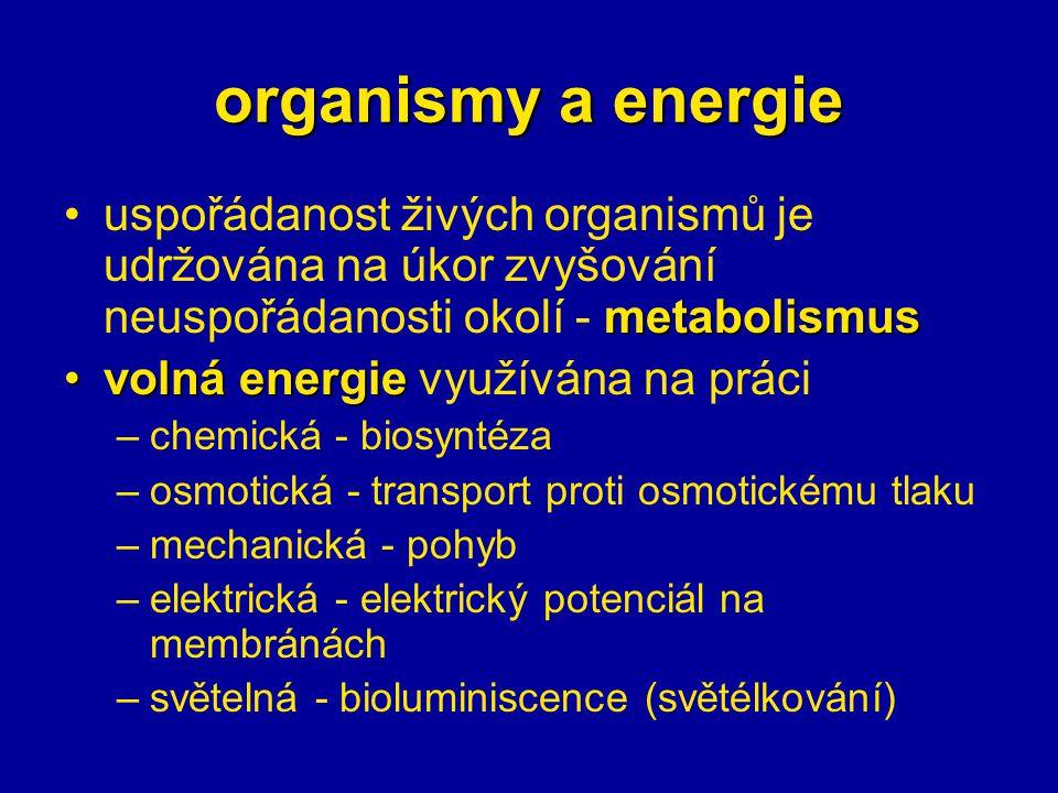 organismy a energie uspořádanost živých organismů je udržována na úkor zvyšování neuspořádanosti okolí - metabolismus.