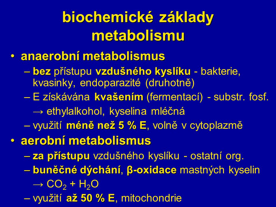 biochemické základy metabolismu