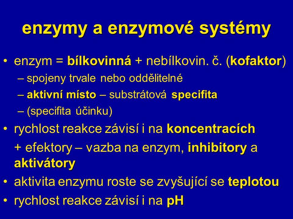 enzymy a enzymové systémy
