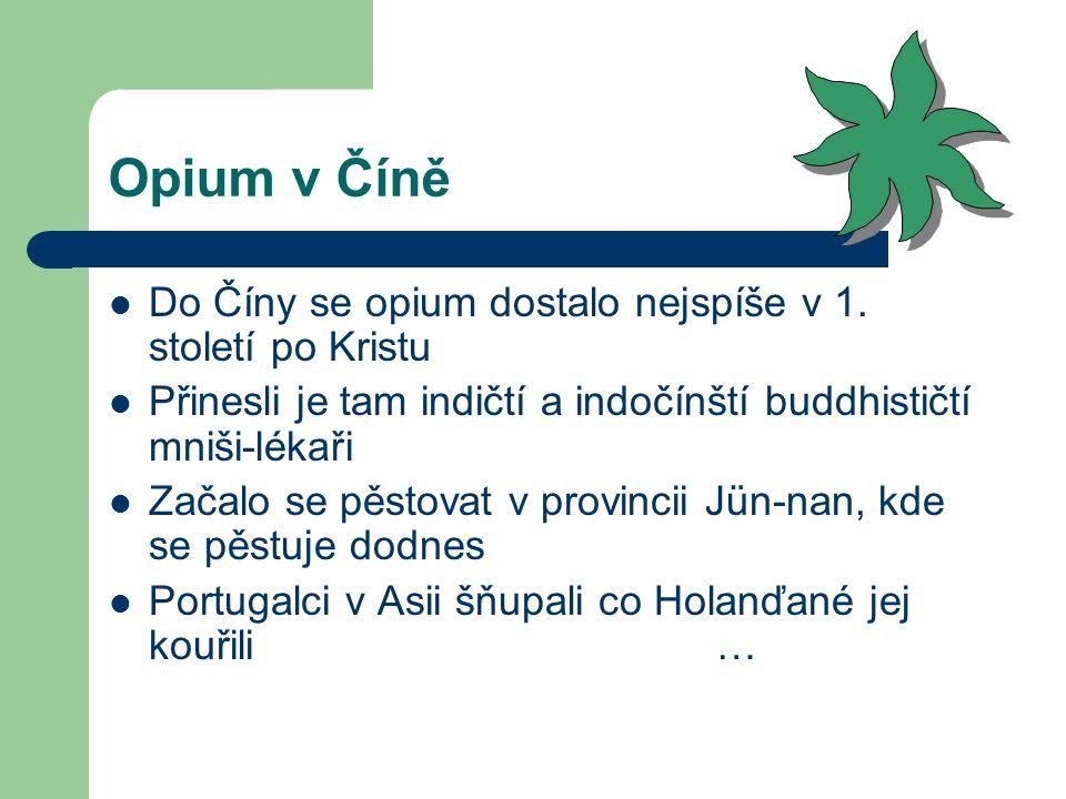 Opium v Číně Do Číny se opium dostalo nejspíše v 1. století po Kristu