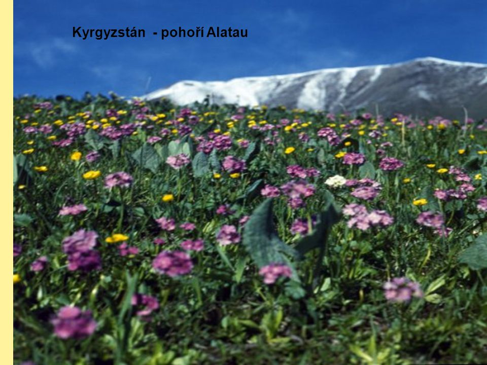 Kyrgyzstán - pohoří Alatau