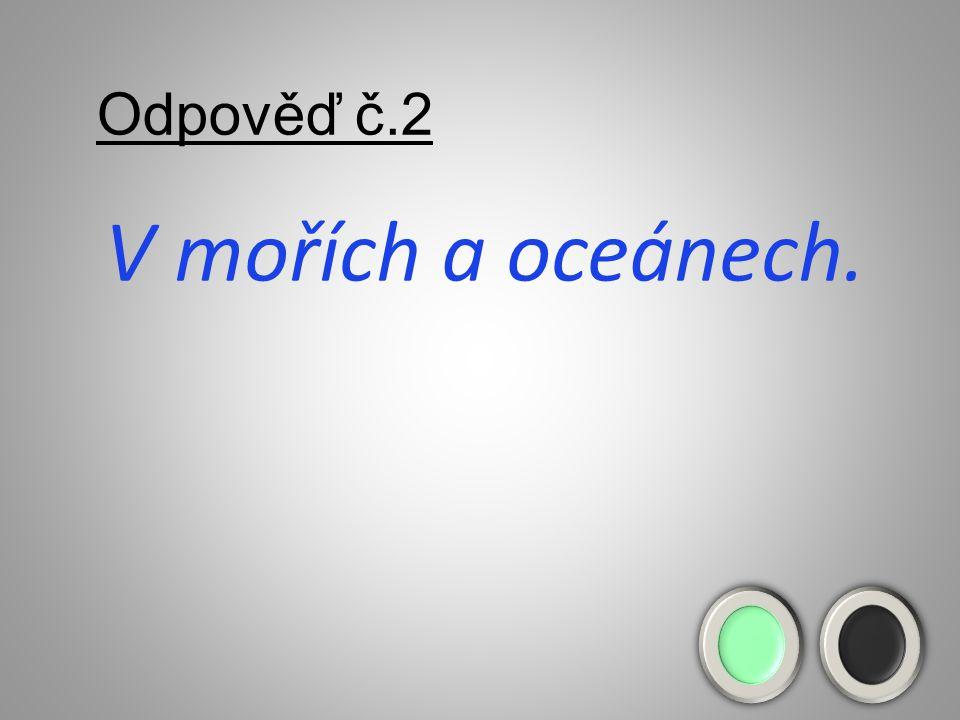 Odpověď č.2 V mořích a oceánech.