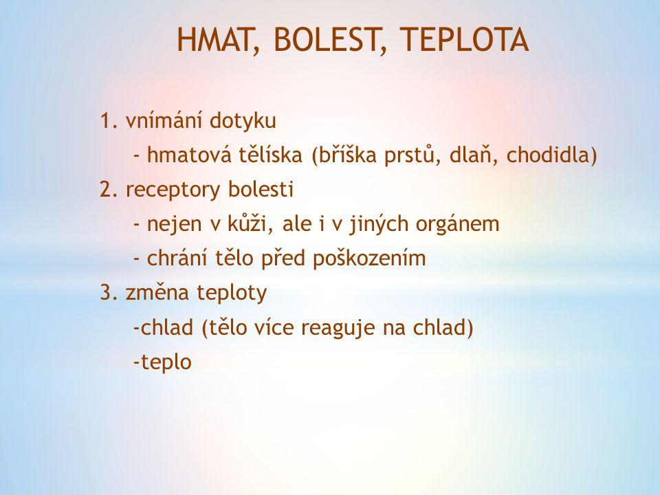 HMAT, BOLEST, TEPLOTA 1. vnímání dotyku