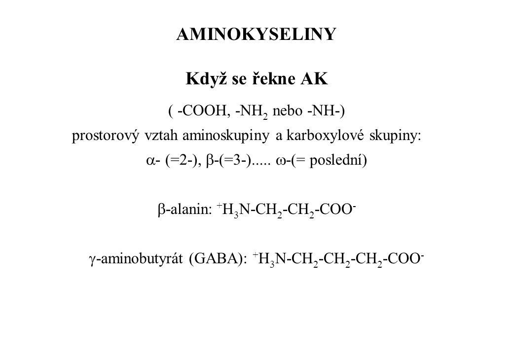 AMINOKYSELINY Když se řekne AK