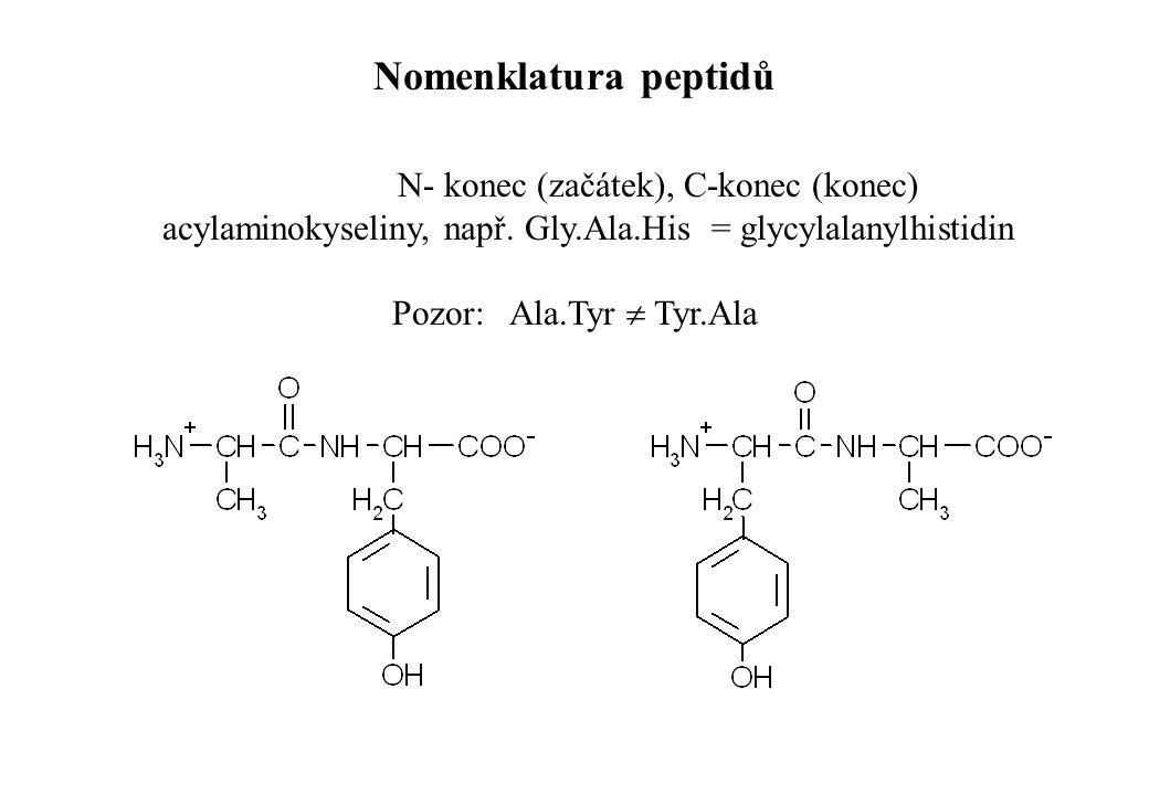 Nomenklatura peptidů N- konec (začátek), C-konec (konec)