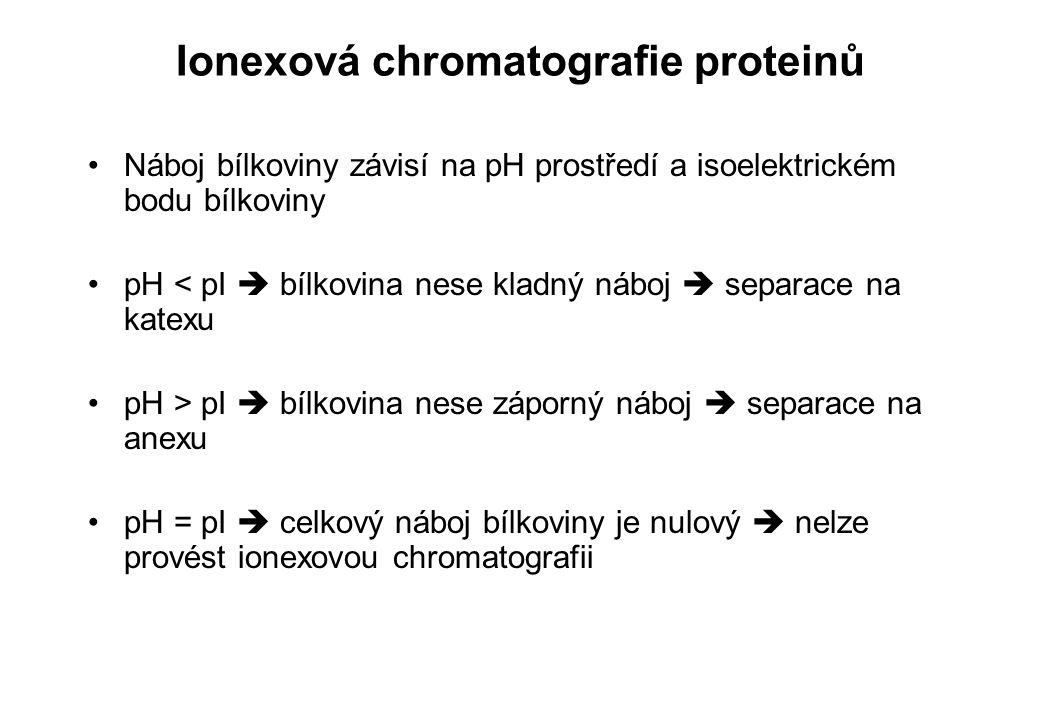Ionexová chromatografie proteinů