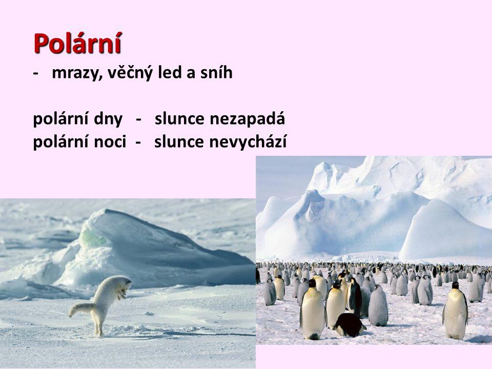 Polární - mrazy, věčný led a sníh polární dny - slunce nezapadá
