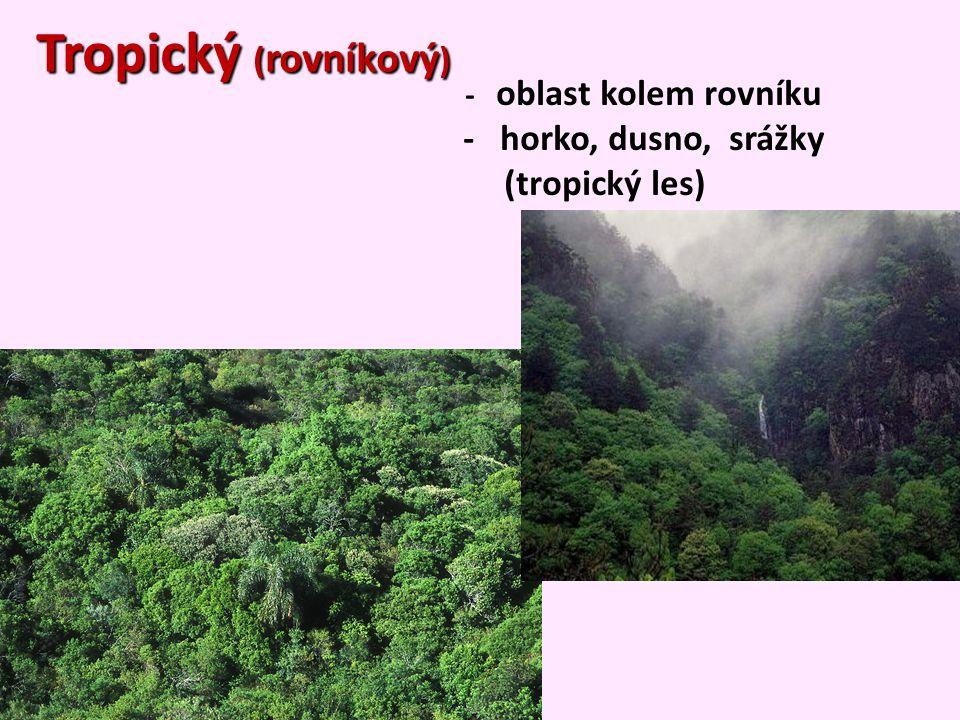 Tropický (rovníkový) - horko, dusno, srážky (tropický les)