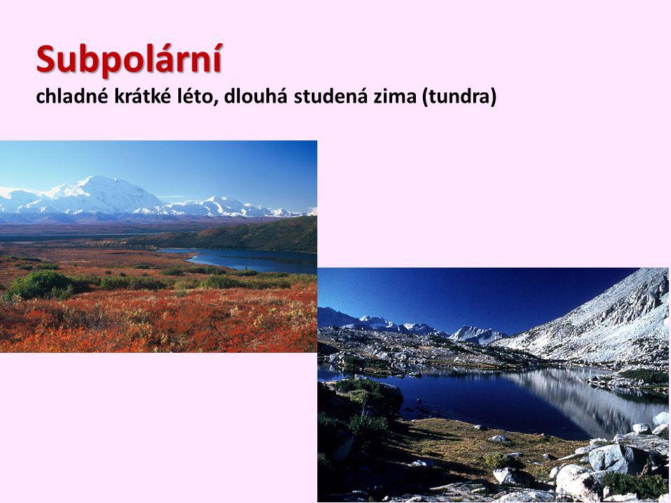Subpolární chladné krátké léto, dlouhá studená zima (tundra)