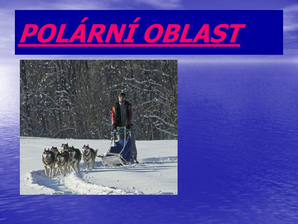 POLÁRNÍ OBLAST