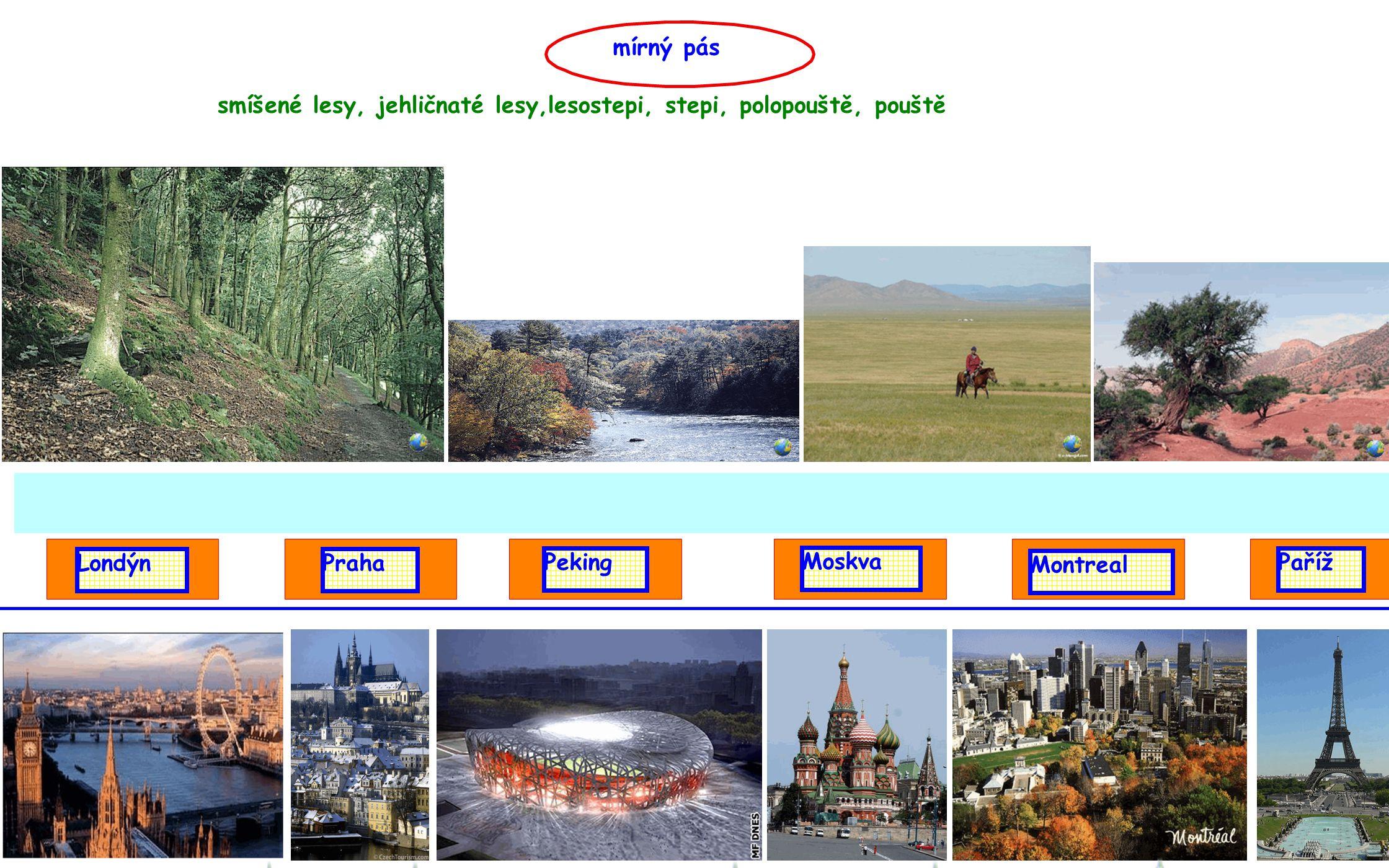 mírný pás smíšené lesy, jehličnaté lesy,lesostepi, stepi, polopouště, pouště. Londýn. Praha. Peking.