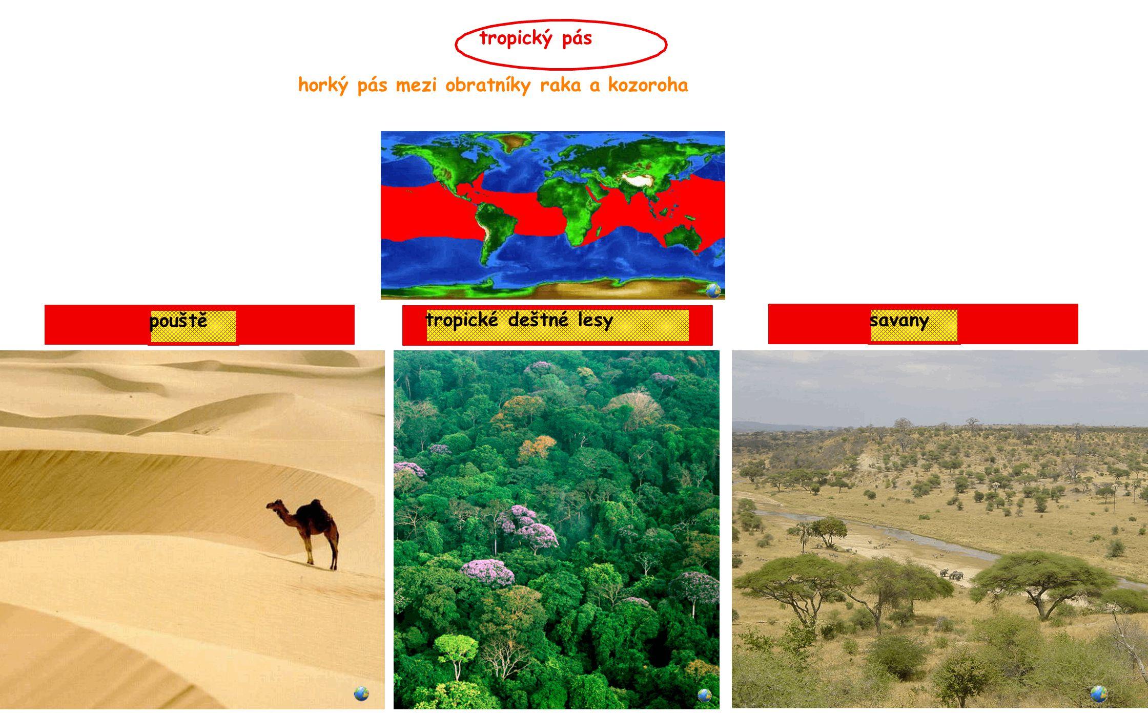 tropický pás horký pás mezi obratníky raka a kozoroha pouště tropické deštné lesy savany