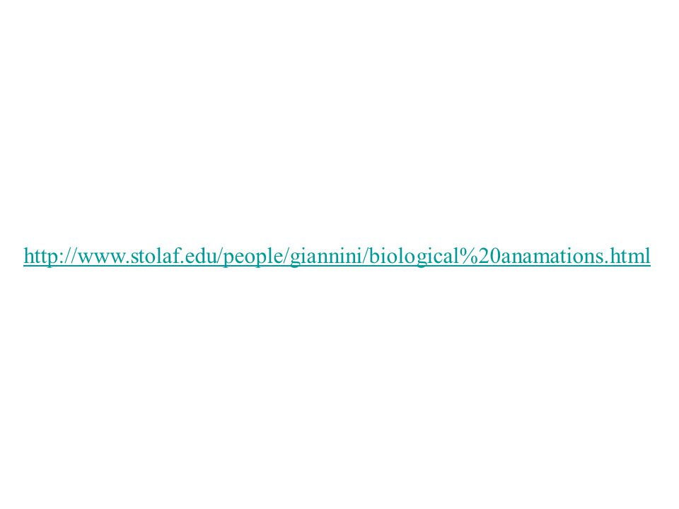http://www.stolaf.edu/people/giannini/biological%20anamations.html