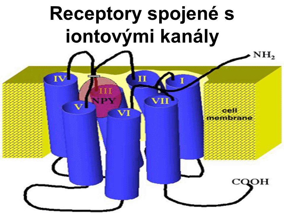 Receptory spojené s iontovými kanály