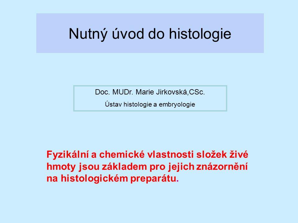 Nutný úvod do histologie