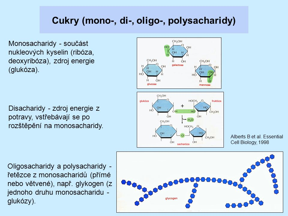 Cukry (mono-, di-, oligo-, polysacharidy)