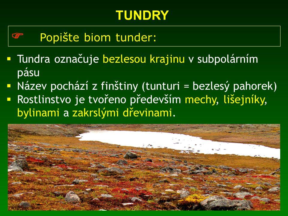  Popište biom tunder: TUNDRY