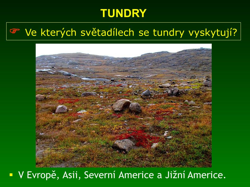  Ve kterých světadílech se tundry vyskytují