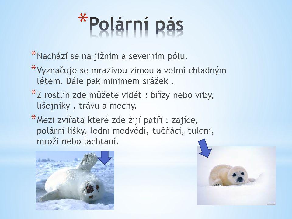 Polární pás Nachází se na jižním a severním pólu.