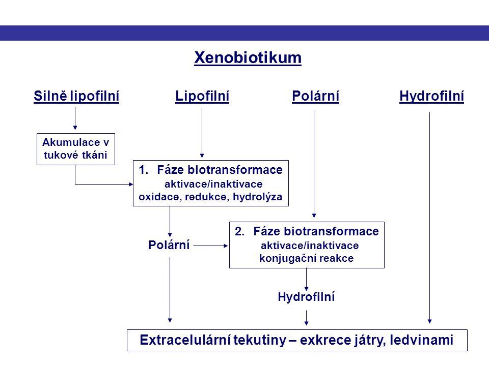 Xenobiotikum Silně lipofilní Lipofilní Polární Hydrofilní