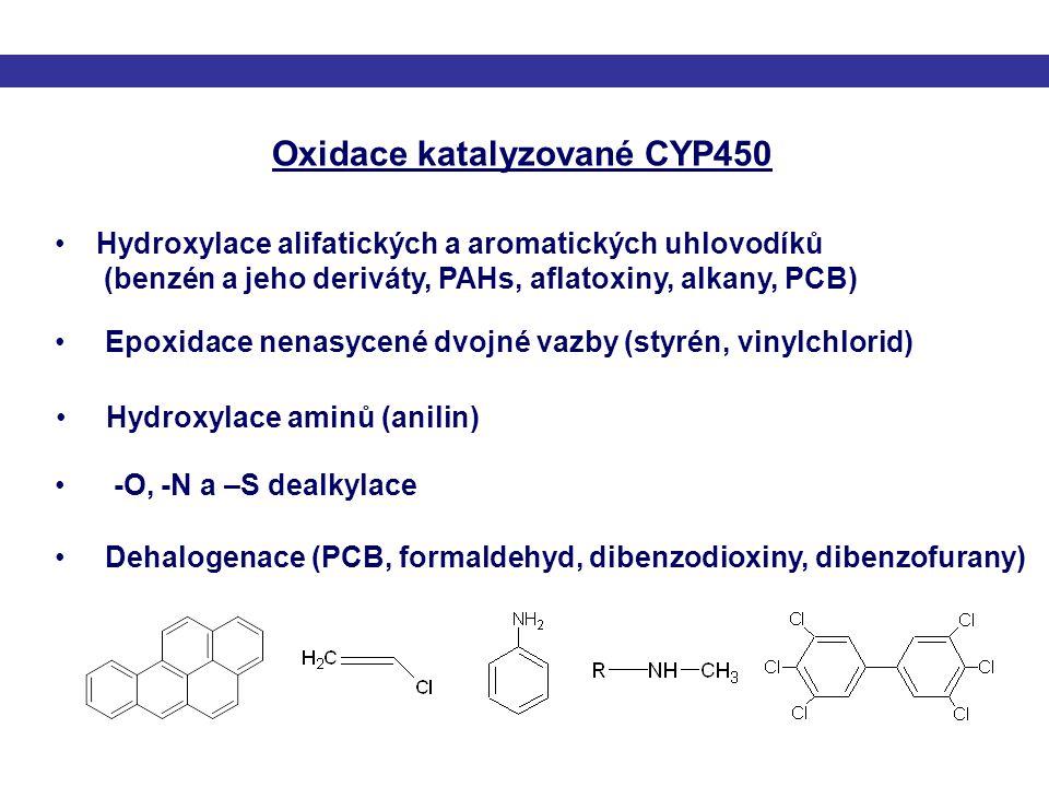 Oxidace katalyzované CYP450