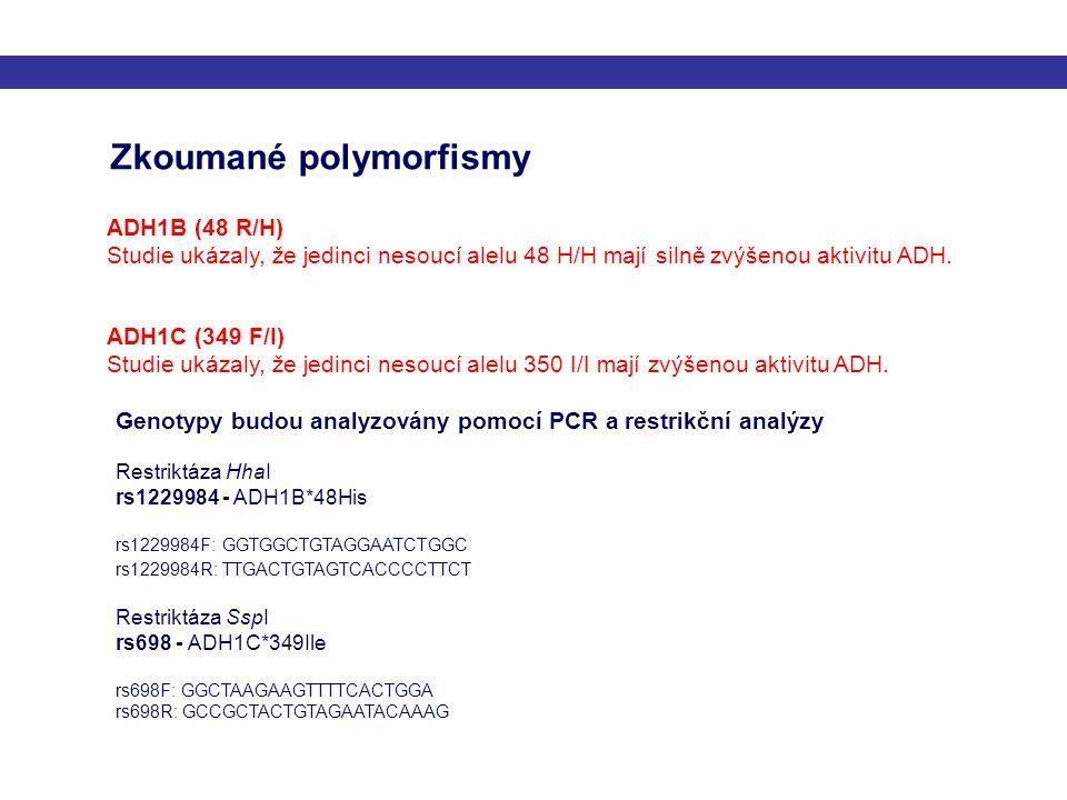Zkoumané polymorfismy