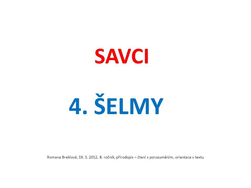 SAVCI 4. ŠELMY. Romana Breklová, 19. 1. 2012, 8.