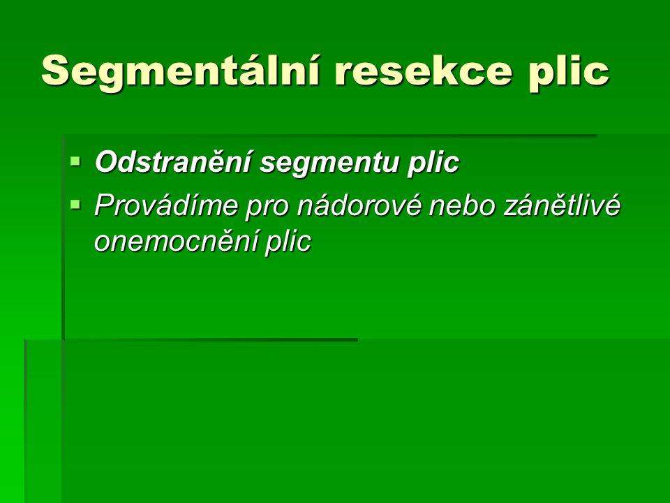 Segmentální resekce plic