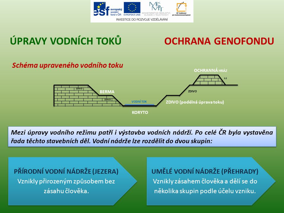 Úpravy vodních toků Ochrana genofondu Schéma upraveného vodního toku