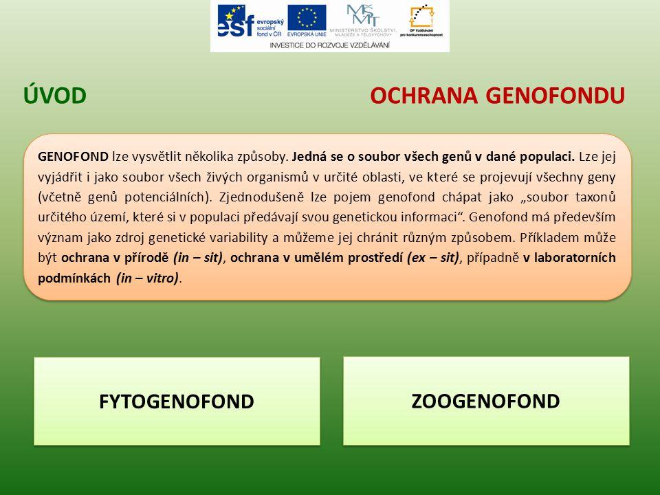 Úvod Ochrana genofondu FYTOGENOFOND ZOOGENOFOND