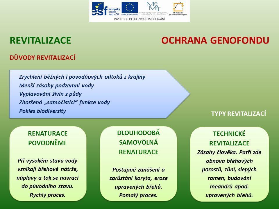revitalizace Ochrana genofondu Důvody revitalizací typy revitalizací
