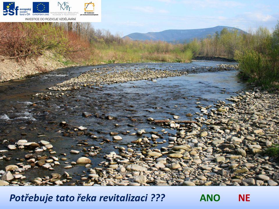 Potřebuje tato řeka revitalizaci ANO NE