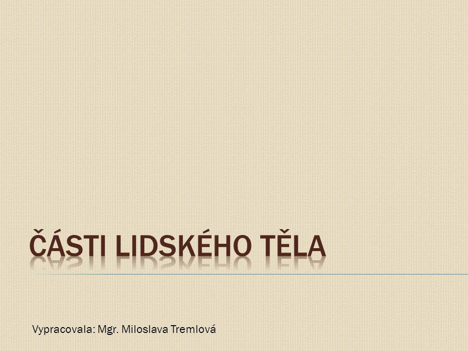 Části lidského těla Vypracovala: Mgr. Miloslava Tremlová