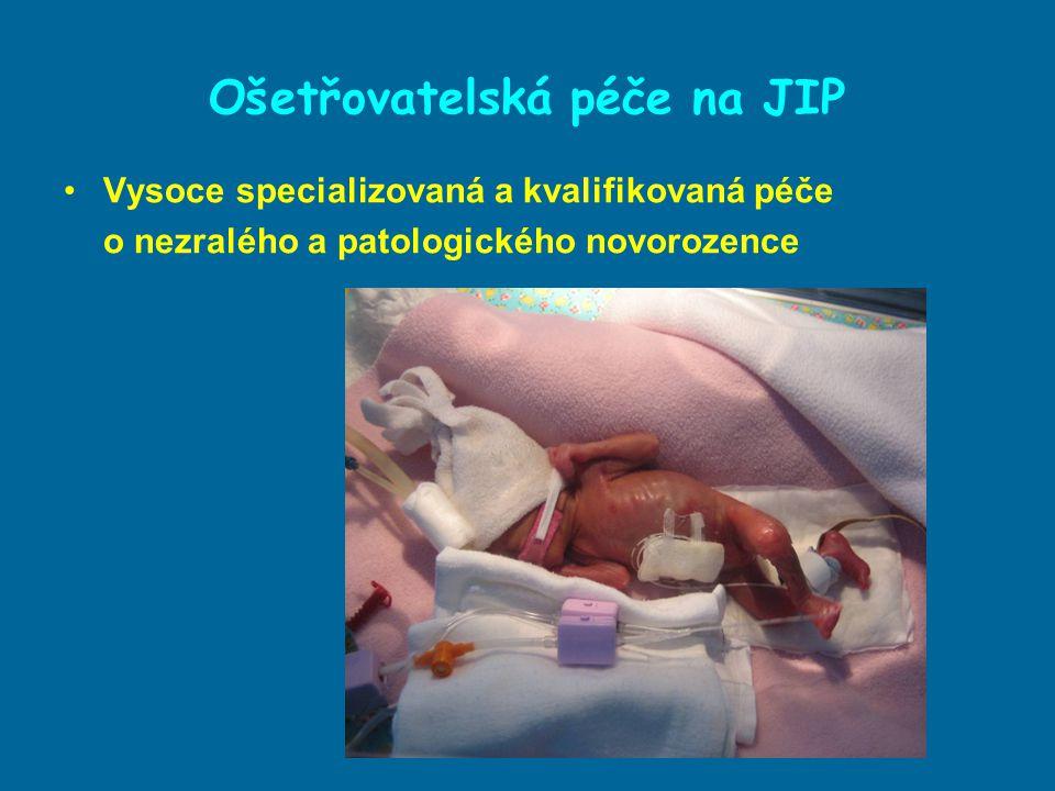 Ošetřovatelská péče na JIP