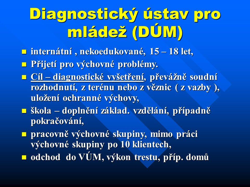 Diagnostický ústav pro mládež (DÚM)