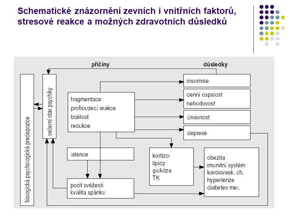 Schematické znázornění zevních i vnitřních faktorů, stresové reakce a možných zdravotních důsledků