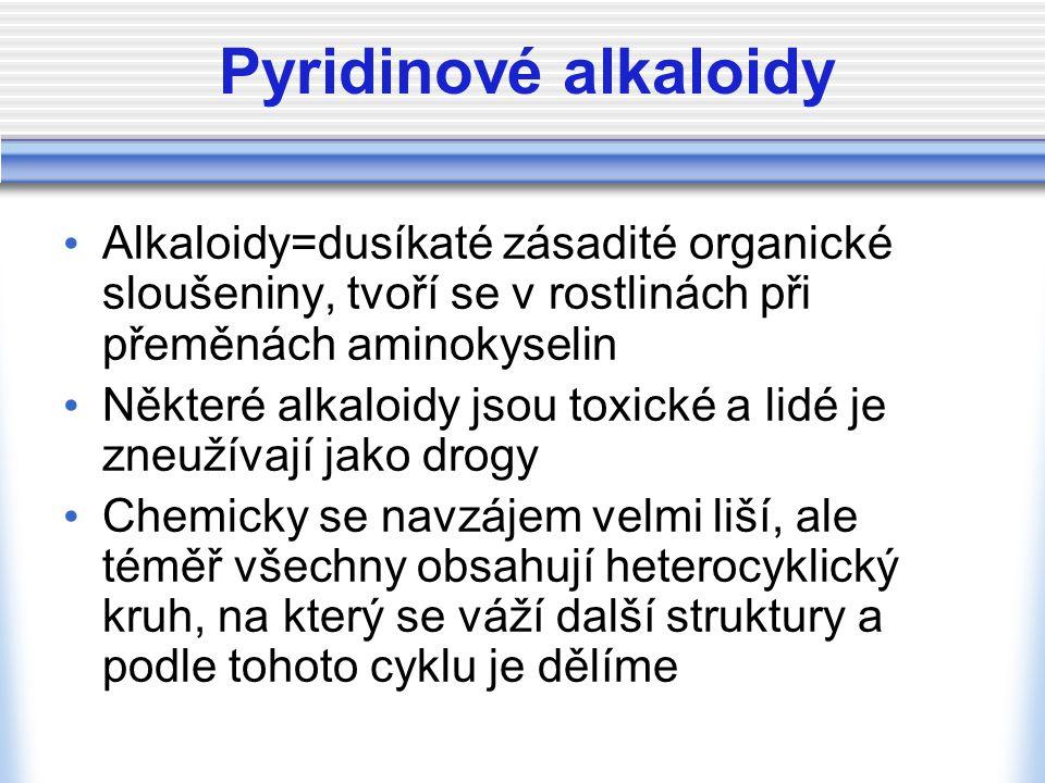 Pyridinové alkaloidy Alkaloidy=dusíkaté zásadité organické sloušeniny, tvoří se v rostlinách při přeměnách aminokyselin.