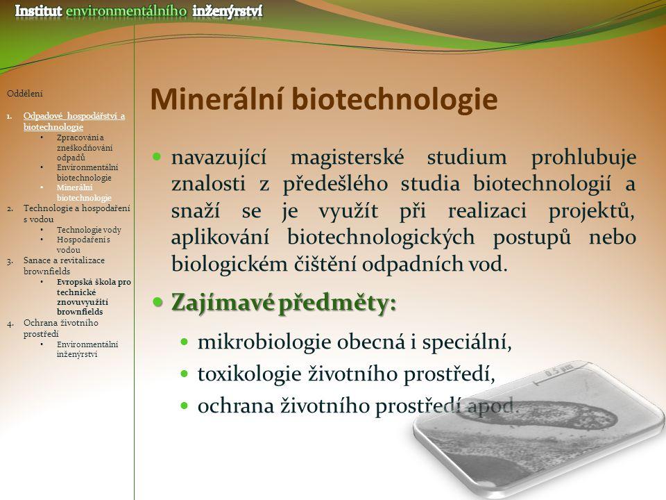 Minerální biotechnologie