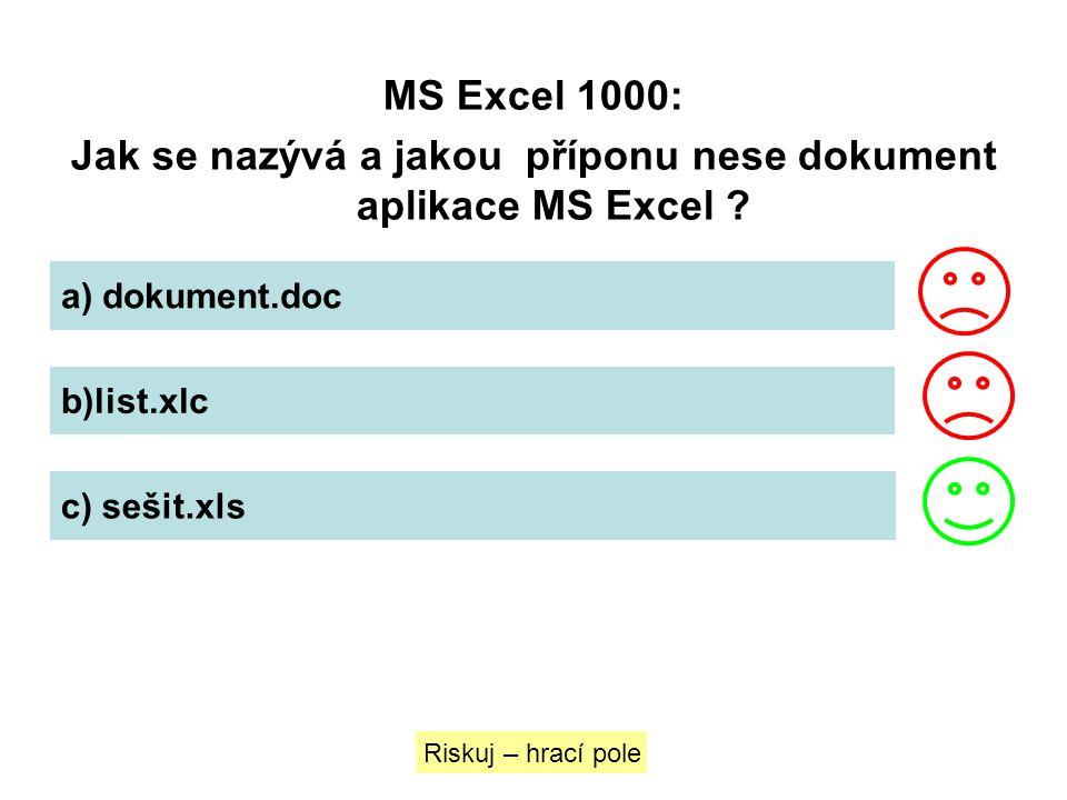 Jak se nazývá a jakou příponu nese dokument aplikace MS Excel