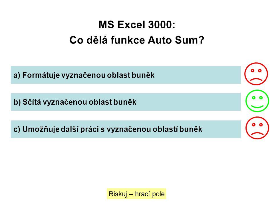 MS Excel 3000: Co dělá funkce Auto Sum