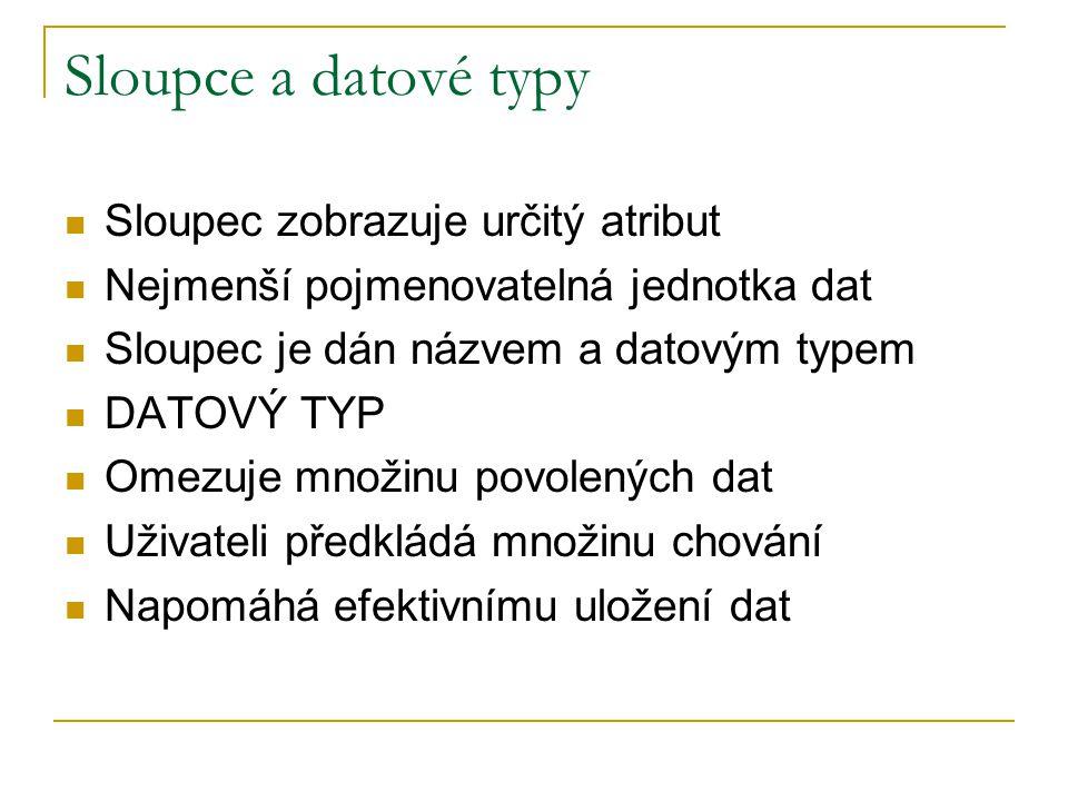 Sloupce a datové typy Sloupec zobrazuje určitý atribut