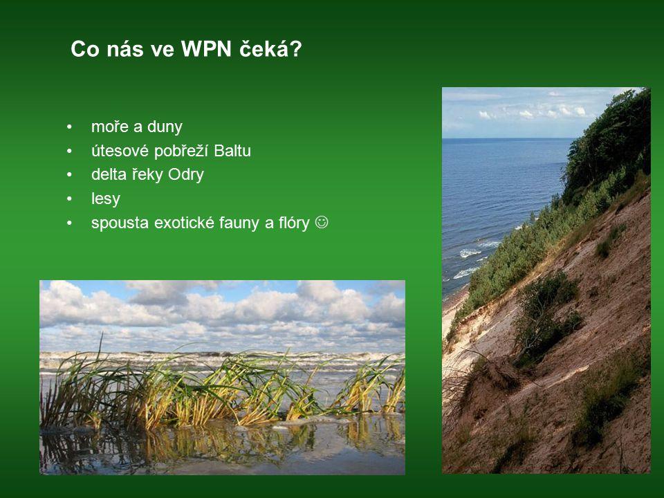 Co nás ve WPN čeká moře a duny útesové pobřeží Baltu delta řeky Odry