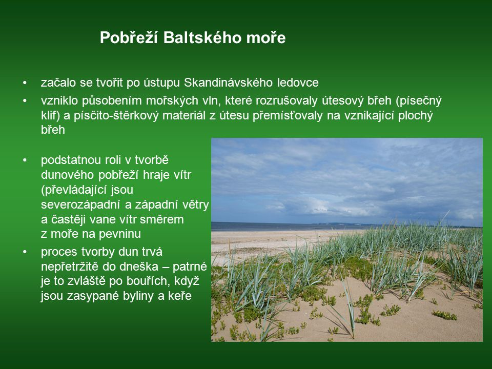 Pobřeží Baltského moře