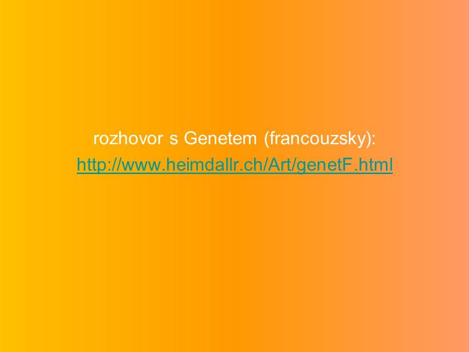 rozhovor s Genetem (francouzsky):