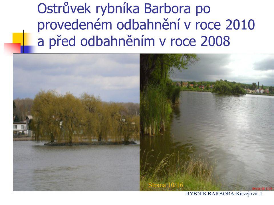 Ostrůvek rybníka Barbora po provedeném odbahnění v roce 2010 a před odbahněním v roce 2008